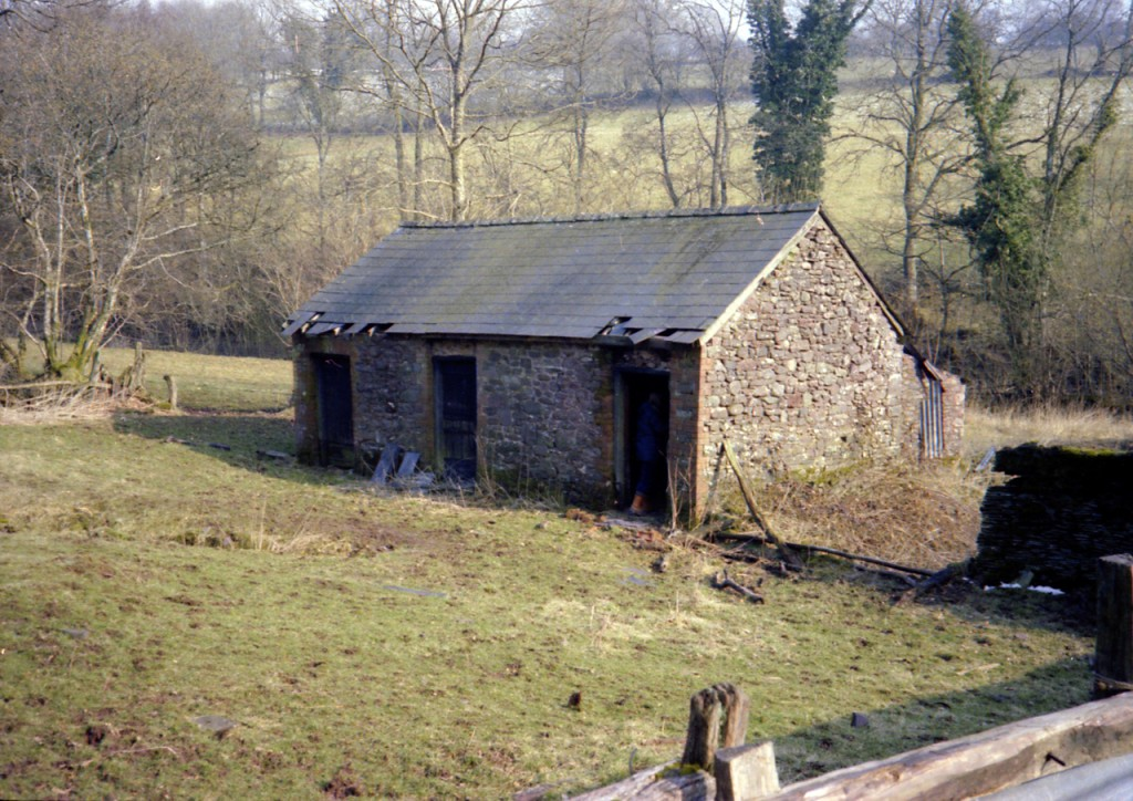 09 - Cowshed_ before Adjusted 1280W@72dpi