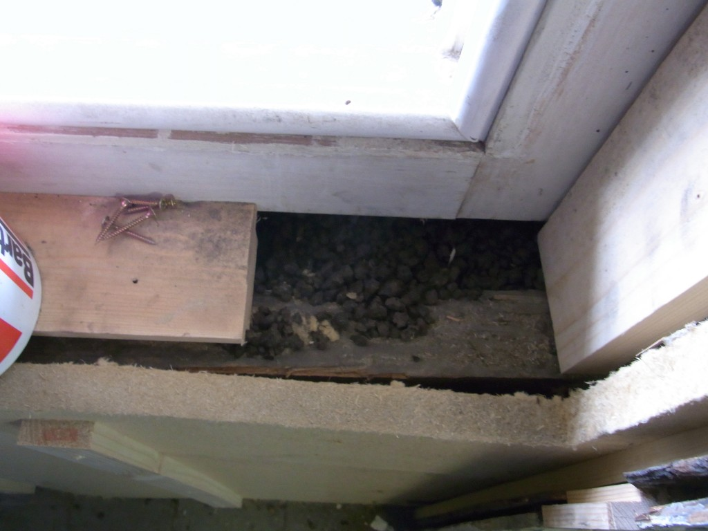 Upgrading insulation using natural materials